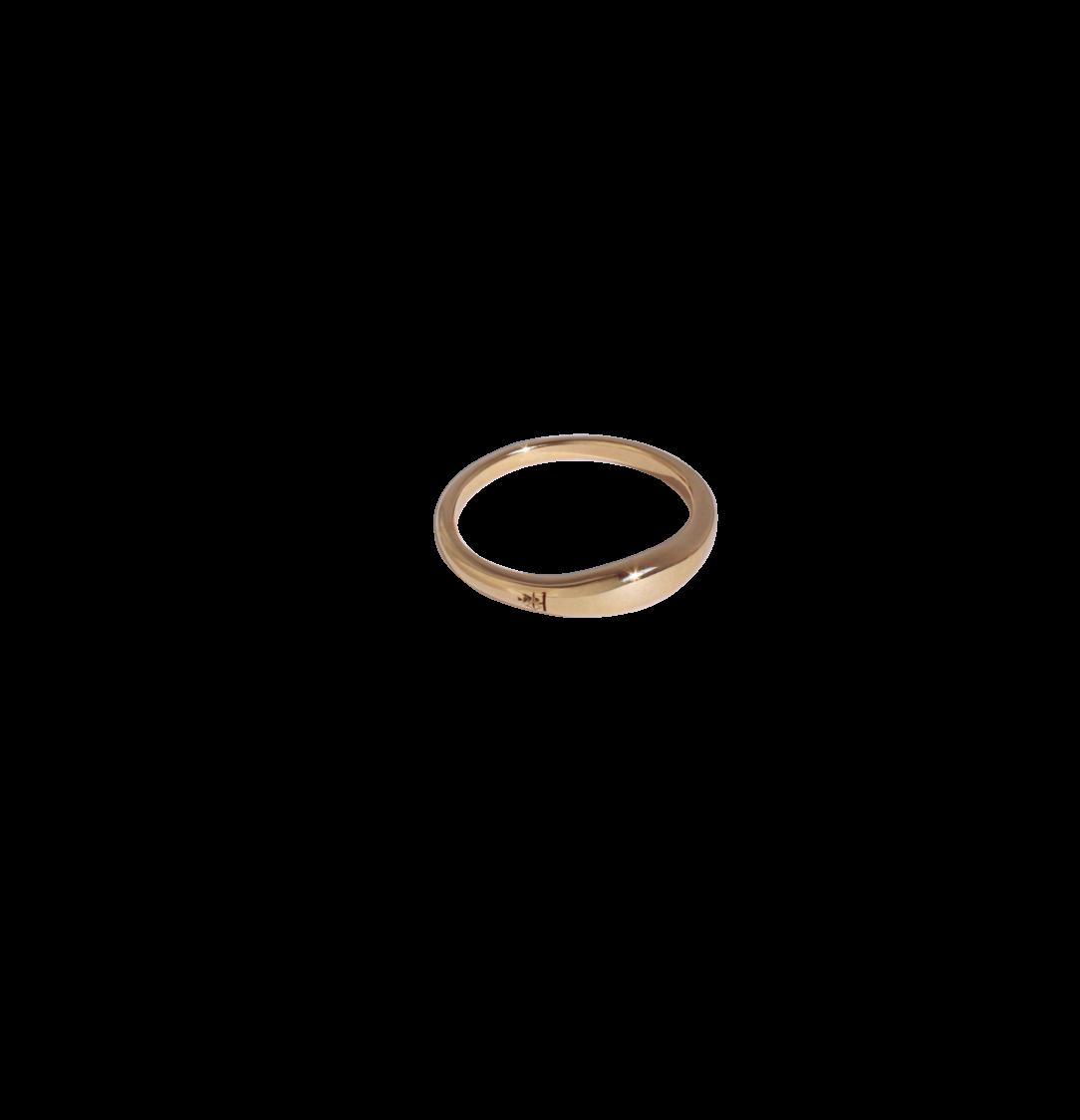 Dieser vergoldete Ring ist Tinas Daumenring 1:1 nachempfunden.